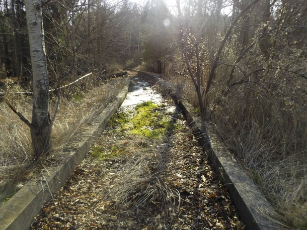 Old overgrown concrete track for rubber-tired train Toronto Canada