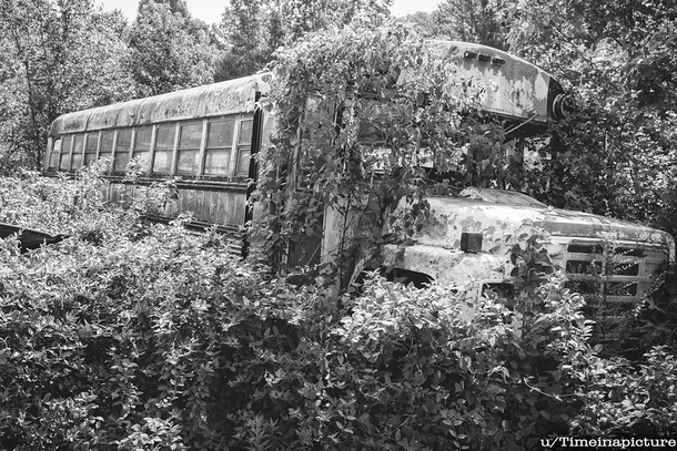 Old school bus Georgia USA