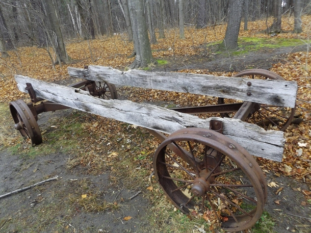 Old wagon by a trail Mississauga Ontario Canada