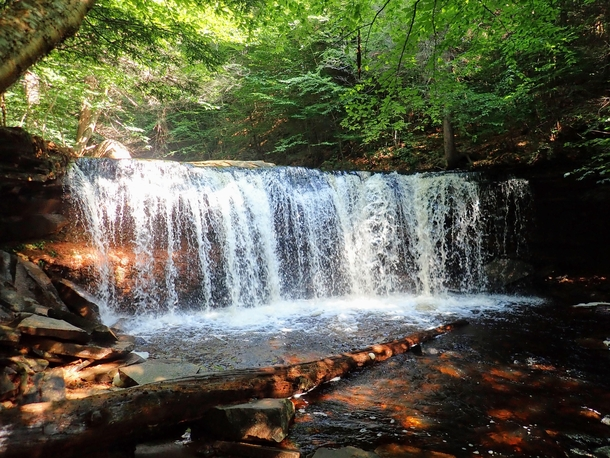 Oneida Falls at Ricketts Glen State Park - Benton PA -