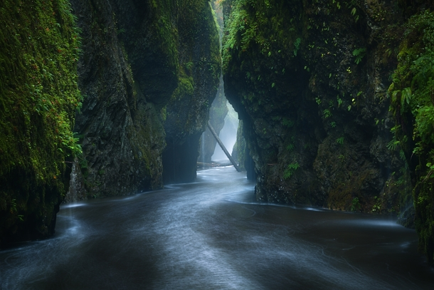 Oneonta Gorge located in the Columbia River Gorge region of Oregon after heavy rainfall began to hit the Pacific Northwest last weekend