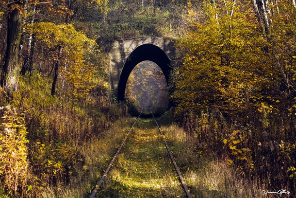 Overgrown Railroad Tunnel in Selisia Poland by Damian Cyfka