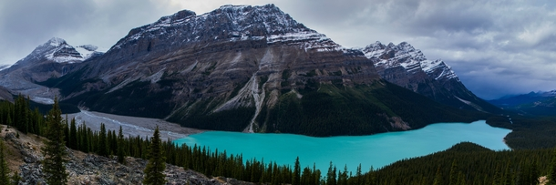 Peyto Lake Banff National Park Canada