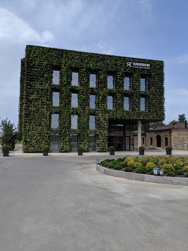 Radisson hotel in wine region of Georgia covered in grapevines