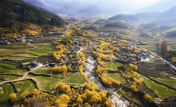 Sansuyu Village Gurye County South Jeolla Province South Korea