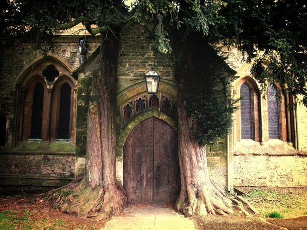 St Edwards Cathedrals North Door flanked by two old yew trees Situated in Gloucestershire England Photo by E Browning