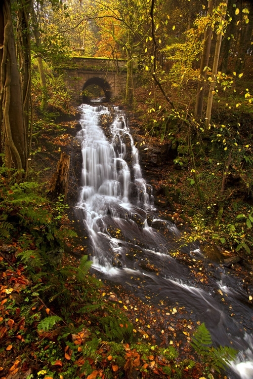 Stone Bridge Waterfall Clyde Valley Scotland