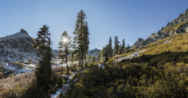Sun shining through the trees in the Trinity Alps of Northern California