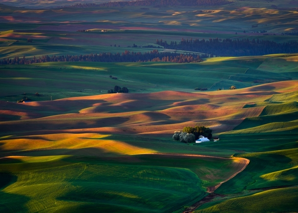 Sunrise on the Palouse WA