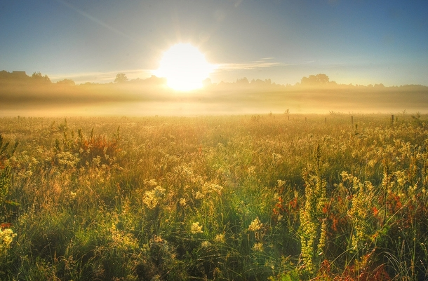 Sunrise over a summer meadow Lithuania