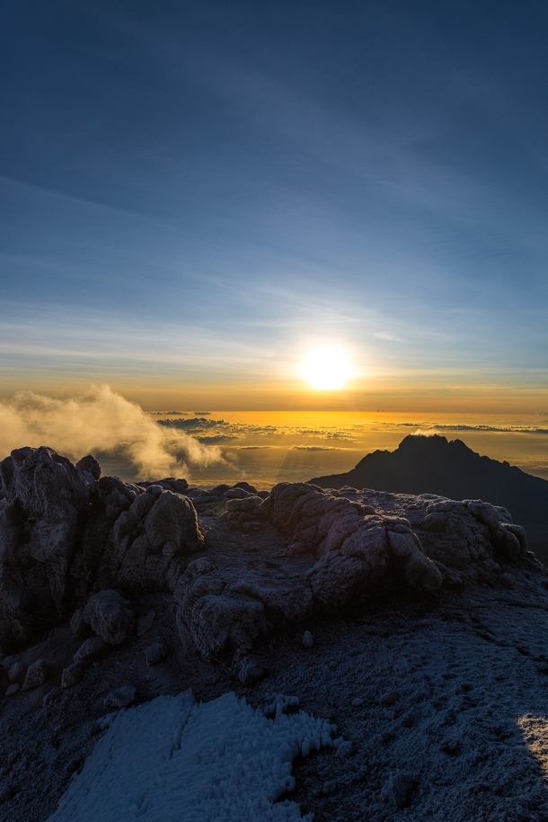 Sunrise over the arctic alpine of Kilimanjaro