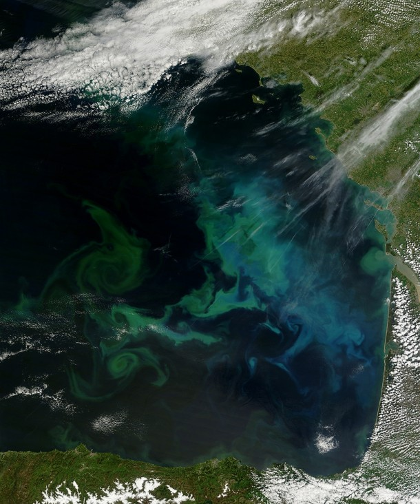 Swirls of green turquoise and cyan in the water show a substantial and long-lasting bloom of phytoplankton while also tracing the currents and eddies that mix them Bay of Biscay France