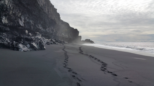 The black sand beaches of Dyrhlaey Iceland