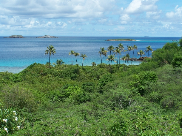 The east side of Culebra Island Puerto Rico