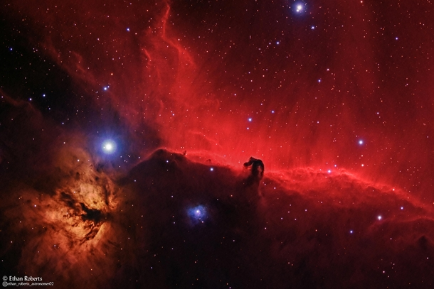 The Horsehead nebula is one of the most iconic structures in space Here is an image I took of the nebula and surrounding nebulosity with my telescope