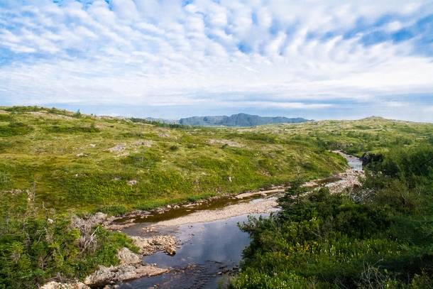 The lush landscape of the Avalon Peninsula Newfoundland