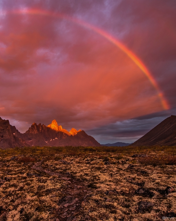The most epic sunrise Ive ever woken up too - Tombstone Mountains Yukon Territory
