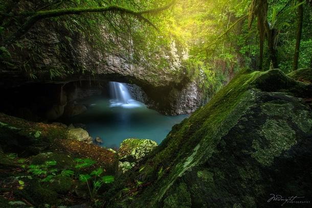 how to get to springbrook national park