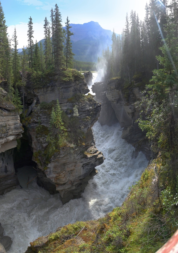 The raging torrent below Athabasca Falls Jasper National Park -