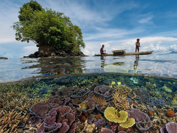 The reefs of Kimbe Bay in the West New Britain Province Papua New Guinea