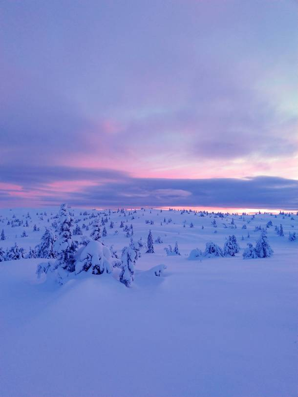 The setting sun on the Norwegian winterscape this week