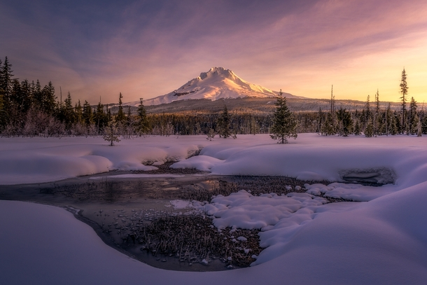 The sun rising on Mt Hood in Oregon from a little meadow