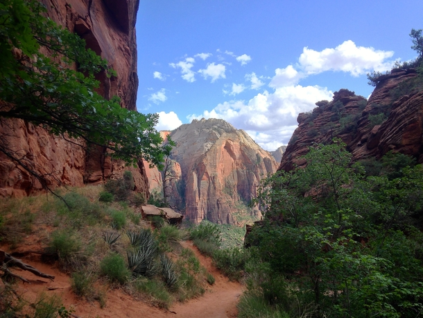 trusty iPhone at Zions National Park Utah