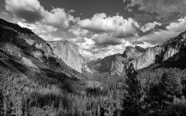 Trying my hand at a black and white Ansel Adams Yosemite Valley shot