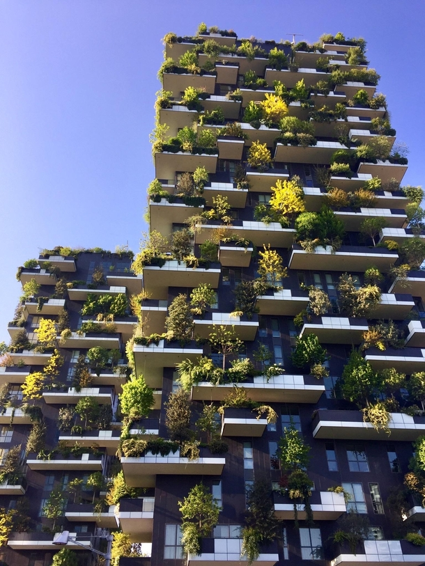 Vertical Forest in Milan designed by italian architect Stefano Boeri Winner of the International Highrise Award