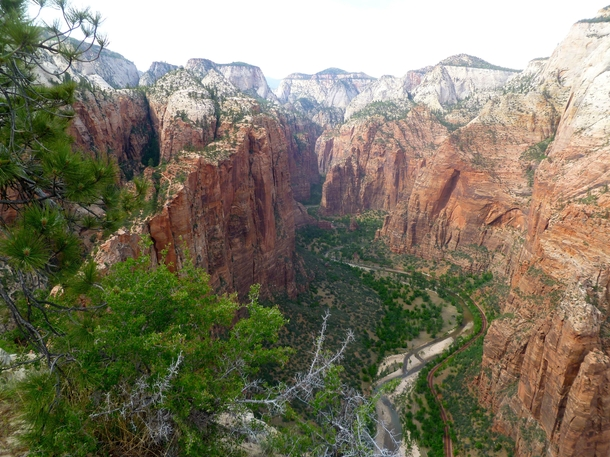 View from Angels landing Zion UT National park OC  X