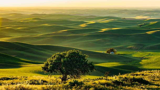 View from Steptoe Butte WA -