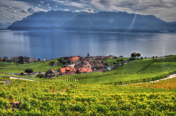 Village of Rivaz in the lavaux region of Switzerland with th century vineyard terraces along Lake Geneva