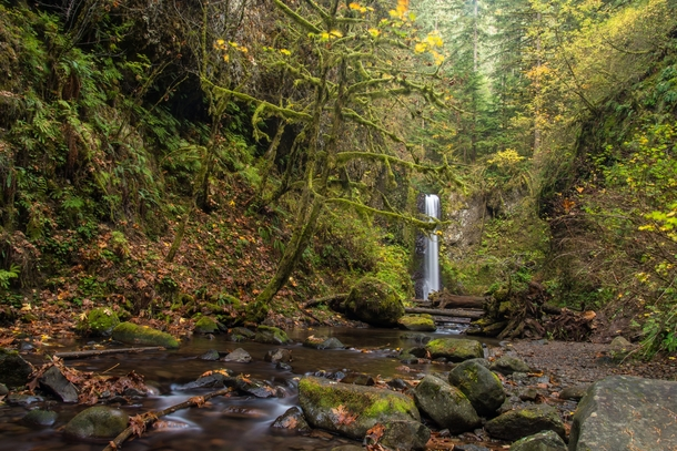 Weisendanger Falls Oregon