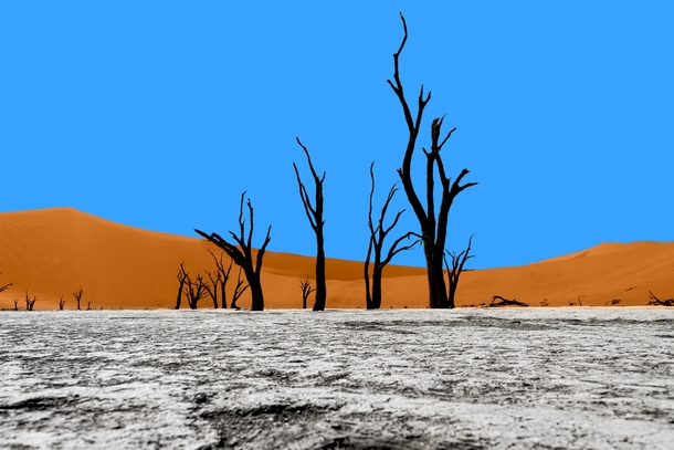 When nature decides to paint Deadvlei Namibia