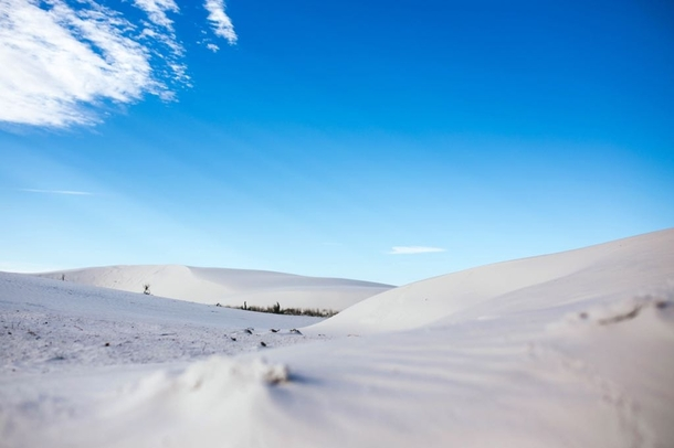 White Sands New Mexico just after sunrise  OC