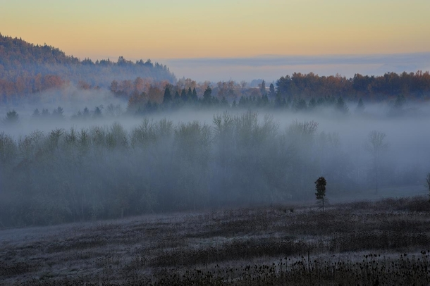 Willamette Valley Morning - Near Eugene Oregon