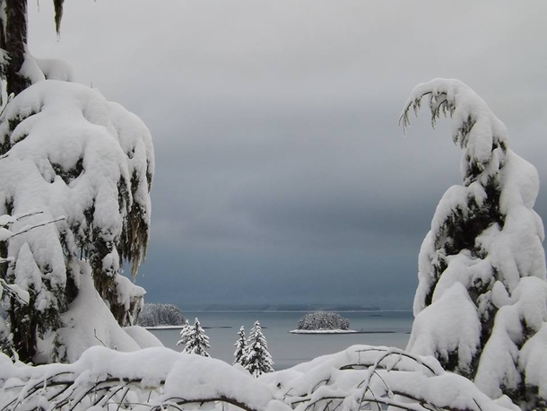Winter wonderland in Juneau Alaska OCx