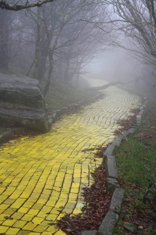 Yellow Brick Road from an abandoned Wizard of Oz theme park in North Carolina