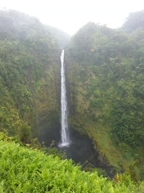 A waterfall in Hawaii - x