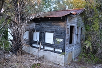 Abandoned shack near Gotha FL Album in comments