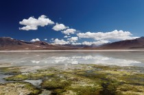 Altiplano lagoon reflections by Mike Green