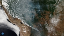 Amazon rainforest burns so much that the smoke reach Argentina and So Paulo