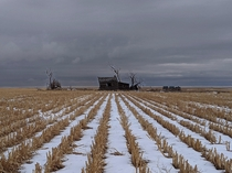 An abandoned farmhouse fades in to the farmland Eastern plains of Colorado USA