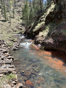 Apache National Forest Stream