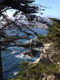 Coastline along the Pacific Coast Highway- California  x