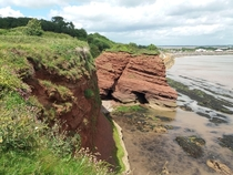 devon cliffs