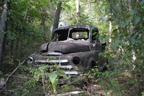 Dodge truck abandoned in a Missouri forest