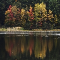 Fall reflections at Waltman Lake Cedar Springs Michigan