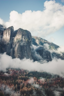 feet of solid granite protruding from the valley of Yosemite National Park CA USA