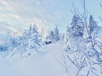 Finding my tiny cabin after days of heavy snow